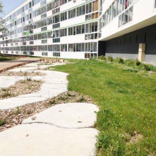 Aménagements des pieds d'immeuble dans le cadre de la rénovation urbaine (ANRU)