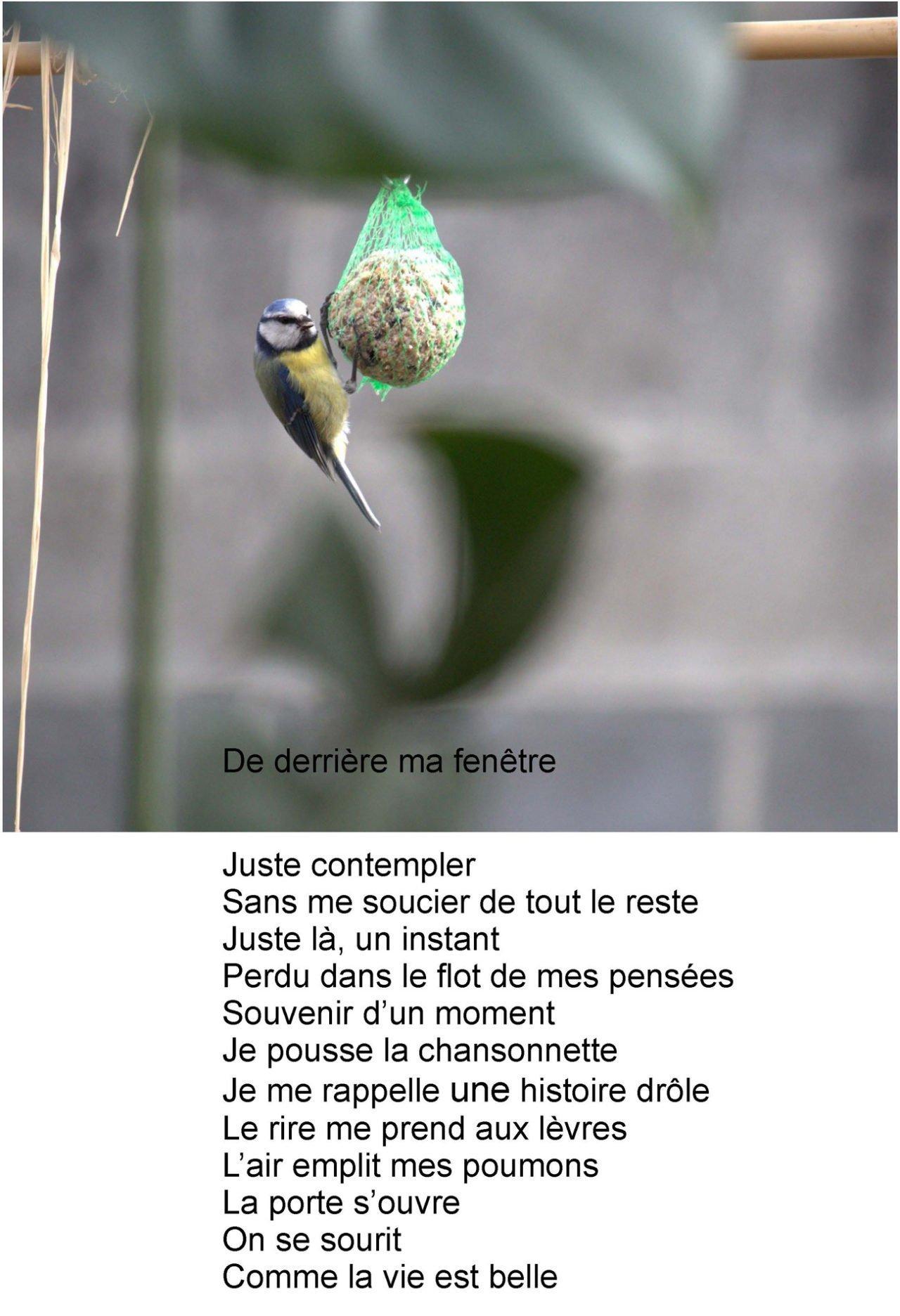 Covid-19 - bons plans et bonnes idée - poème de Nathalie